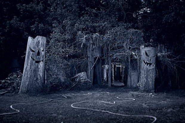 Mark Off's Haunted Forest